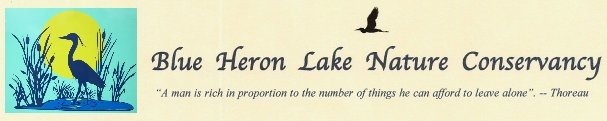 Blue Heron Lake Nature Conservancy, Inc.